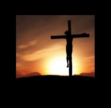 Buď živá ratolesť a zostaň v Kristovi!